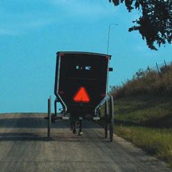 Amish in Harmony MN