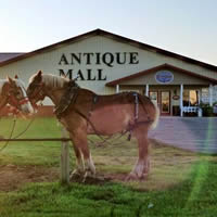 Shopping in Harmony - New Generations Antique Mall